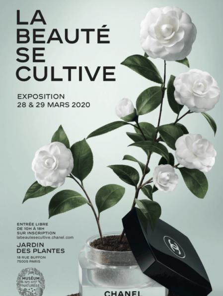 La Beauté se cultive - Exposition Chanel