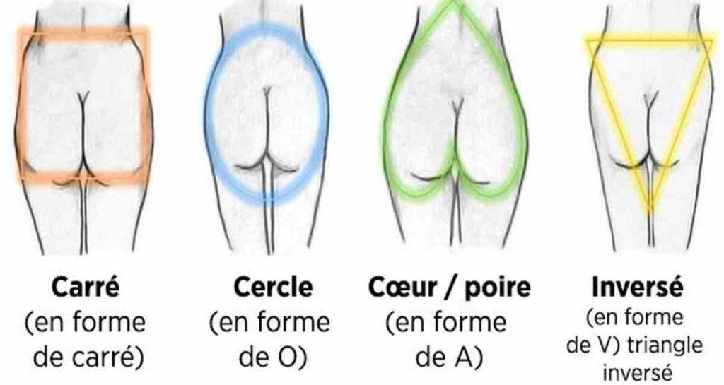 Les différentes formes des fesses
